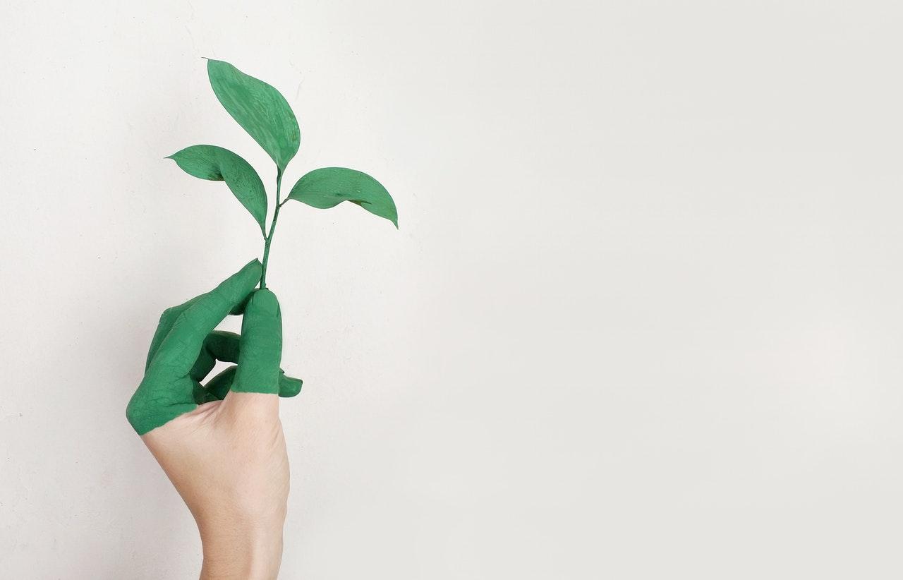 miljøvenlighed